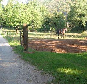 chevaux-sept-08-063
